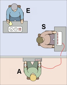 The Milgram's Experience